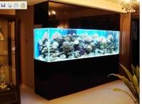 玻璃鱼缸材质哪个好?玻璃鱼缸如何制作?